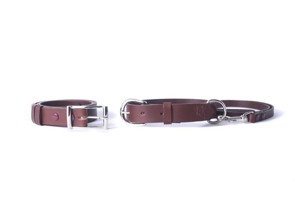 collier et laisse pour chien assortie à la ceinture chocolat de son maitre ou sa maitresse